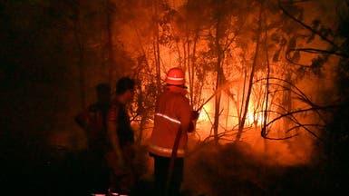 """إندونيسيا تغلق 30 شركة.. والسبب """"ضباب دخاني"""""""