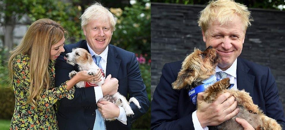 جونسون يستعين بكلبه ديلين للتعامل مع ضغوط الانسحاب والتغلب عليها