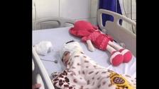 محاكمة عاجلة.. جديد قضية الجدة معذبة حفيدتها حتى الموت