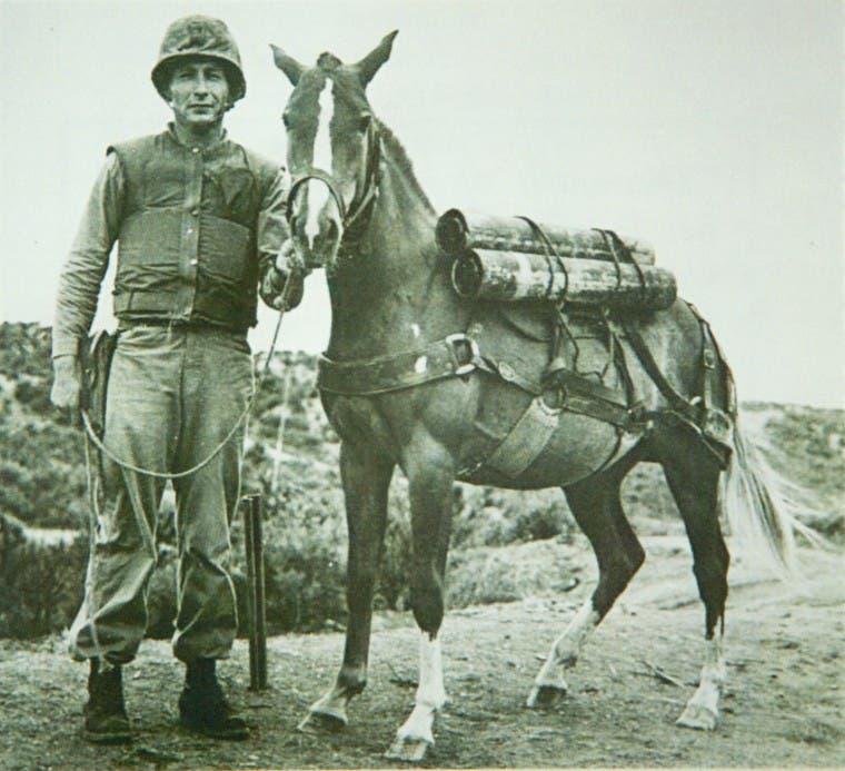 صورة لريكلس رفقة أحد الجنود المسؤولين على تدريبها