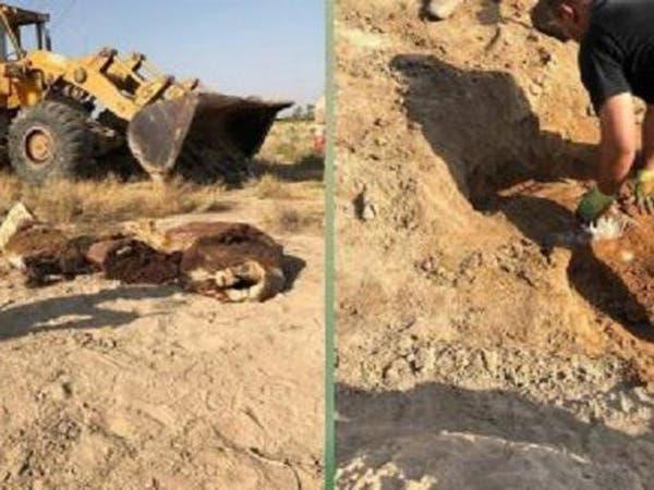 العراق.. إحباط هجوم لداعش يستهدف زوار أربعينية الحسين