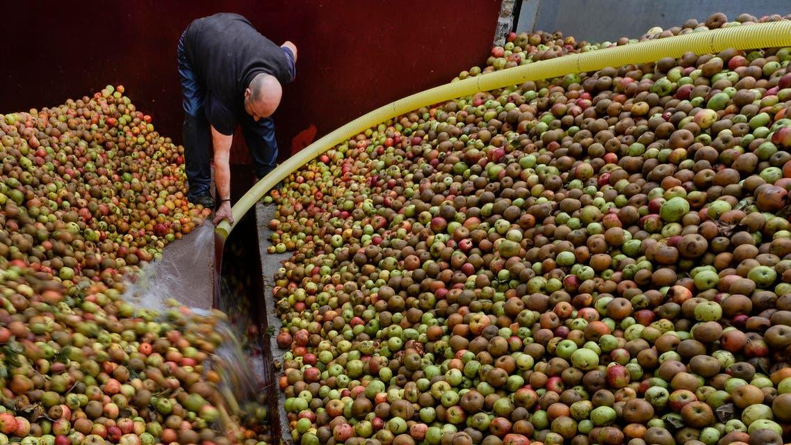 agriculture spain apples EU farming - AFP