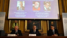Three win Nobel Prize in Physics for work to understand cosmos