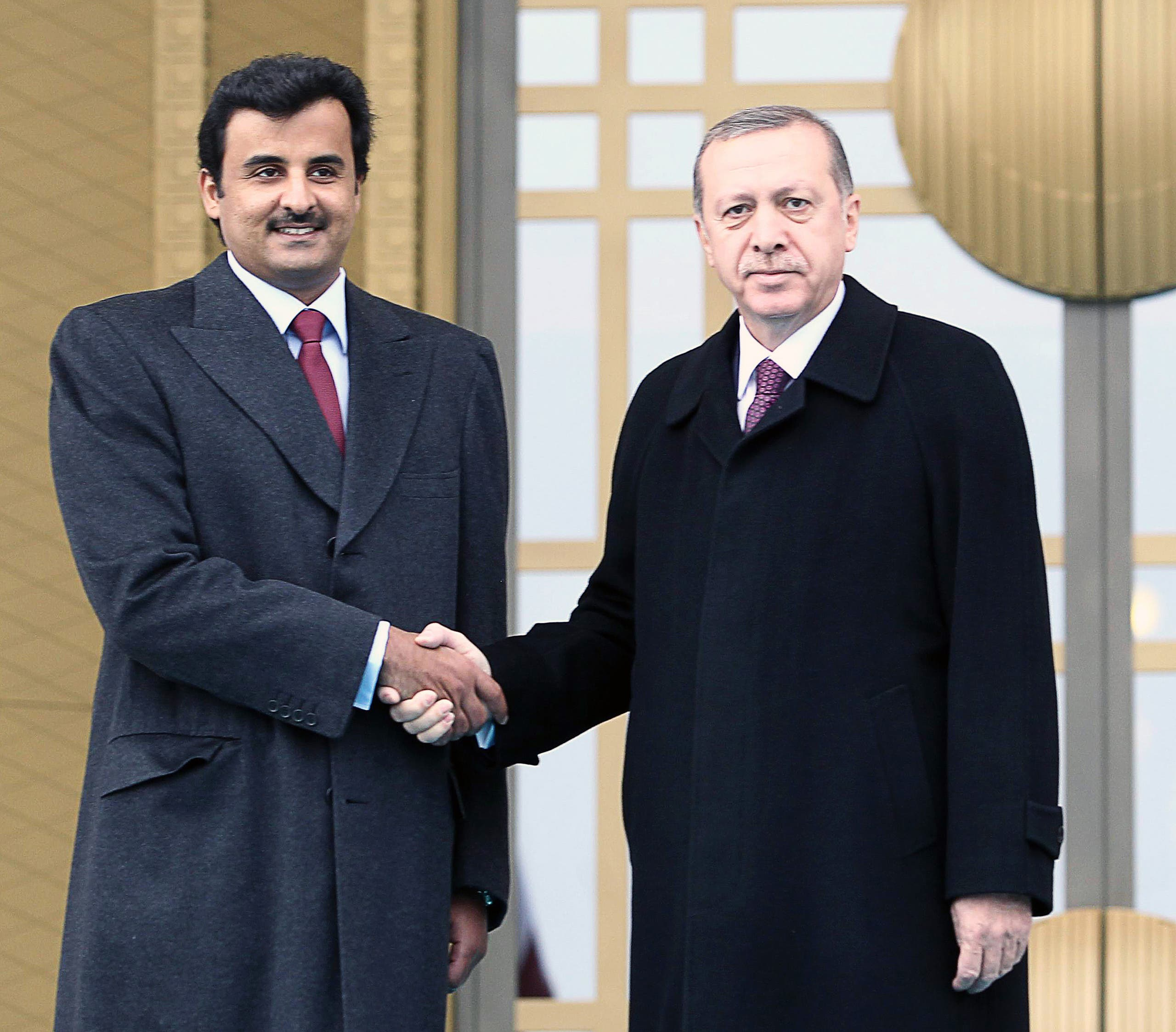 أمير قطر والرئيس التركي(أرشيفية- فرانس برس)