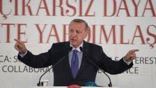 Turkey's Syria campaign serves Erdogan's electoral ambitions