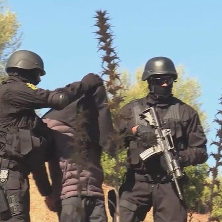 المغرب.. تفكيك خلية موالية لداعش