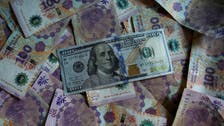 MENA non-resident capital flows to rise to $200 bln in 2019 on reforms: IIF