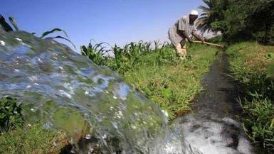 هذه بدائل مصر لترشيد استهلاك المياه في الزراعة