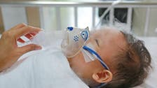 كيف يؤثر نظام الحامل الغذائي على حساسية مولودها؟
