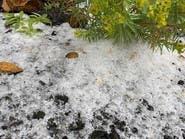 شاهد.. الثلوج تتساقط على قرية في عسير