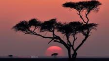 تبوک کے غروب آفتاب کے جادوئی مناظر:تصاویر