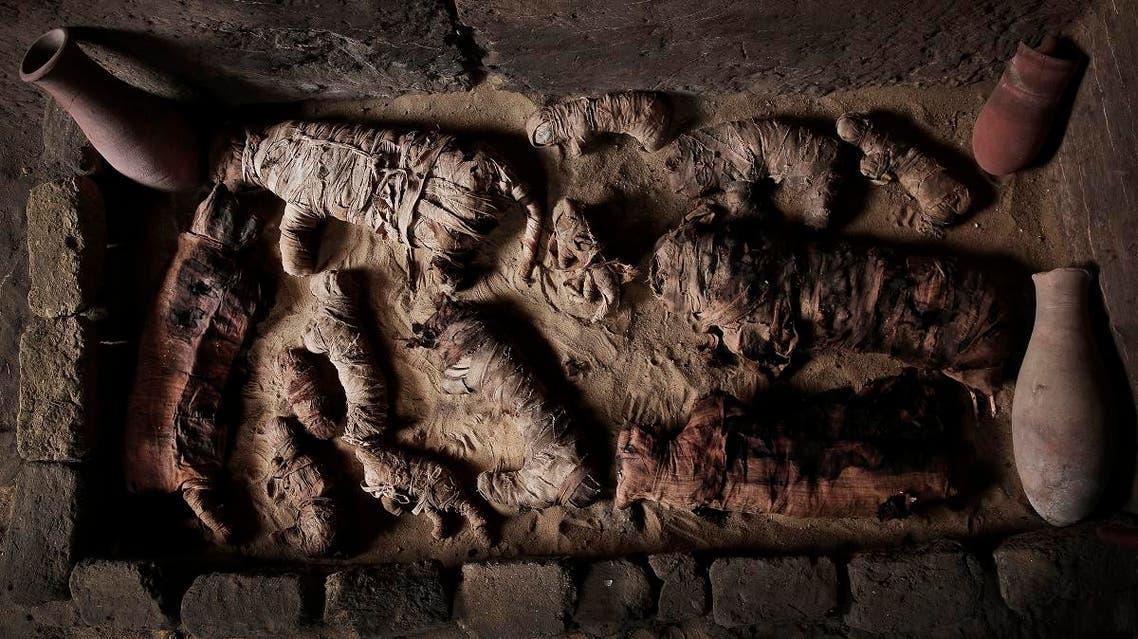 Mummified cats inside a tomb, at an ancient necropolis near Egypt's famed pyramids in Saqqara, Giza, Egypt, Saturday, Nov. 10, 2018. (AP)