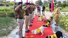 بھارت میں 'کتے' اعلیٰ فوجی اعزاز کے ساتھ ریٹائرڈ