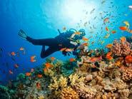 الاحترار يهدد الاقتصاد بتدمير مصايد الأسماك وشعاب المرجان