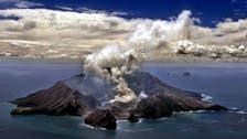 New Zealand police confirm five dead in volcanic eruption