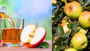 تفاحة واحدة في اليوم لا تكفي لإبعاد الطبيب.. بل تفاحتان