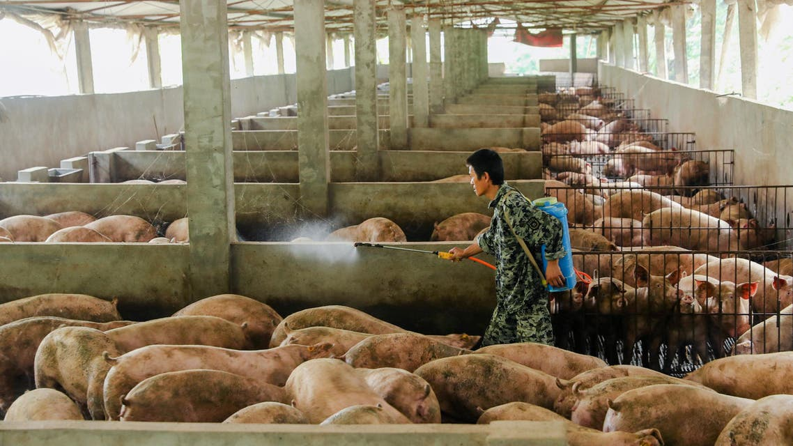 A man disinfects a pig farm in Guangan, Sichuan province, China August 27, 2019. REUTERS/Stringer ATTENTION EDITORS - THIS IMAGE WAS PROVIDED BY A THIRD PARTY. CHINA OUT.