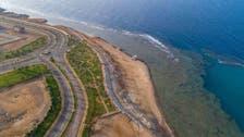 سعودی عرب کے شمال مغرب میں واقع ساحل قدرتی جمال کا پیکر