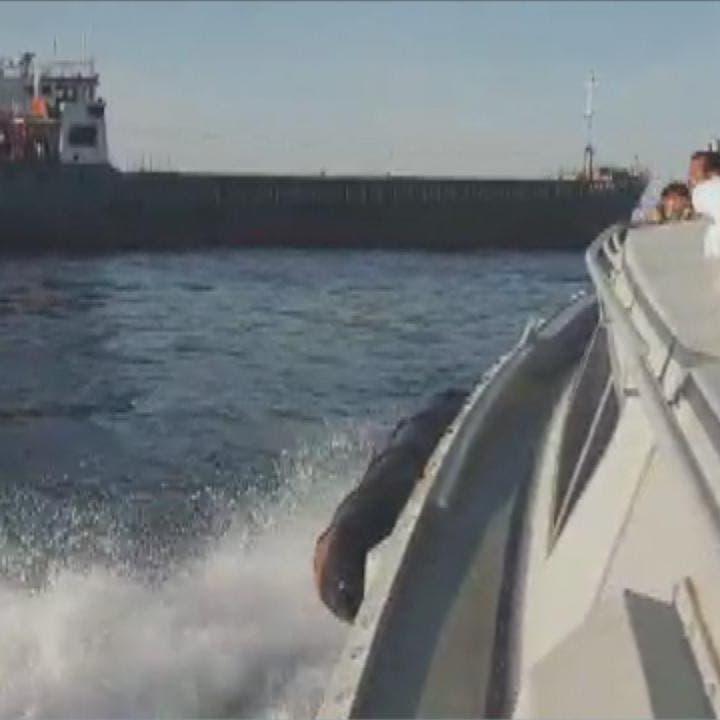 الجيش الليبي يجر سفينة تركية للتفتيش