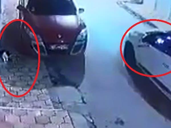 فيديو صادم.. تونسي يترصد القطط ليقنصها والشرطة تعتقله