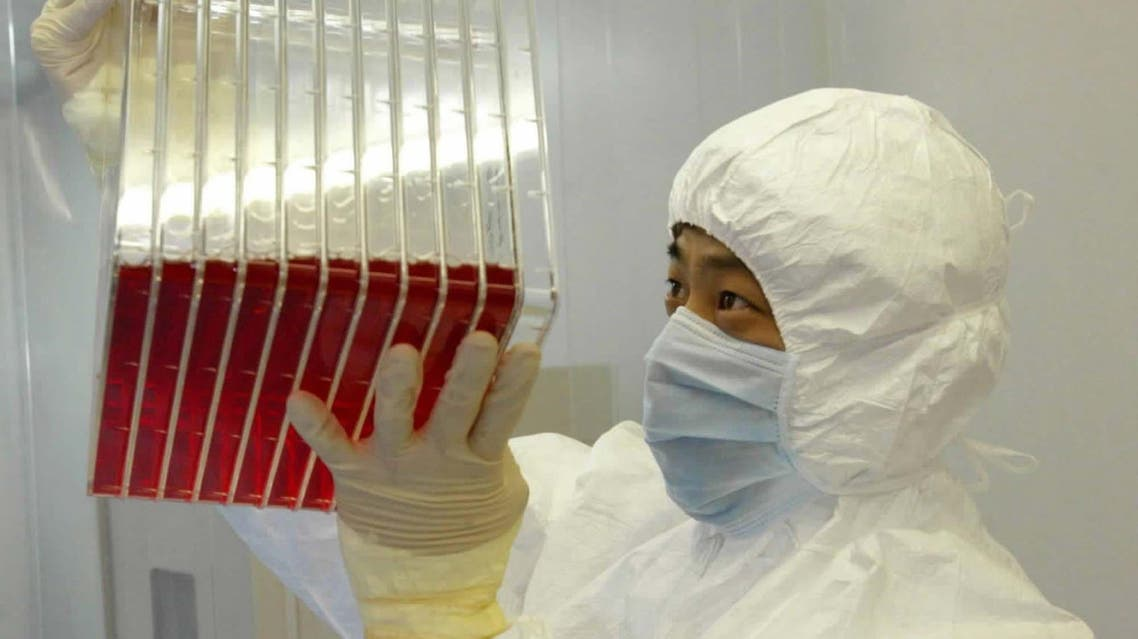 This undated photo shows a scientist observing experimental SARS vaccine living in a culture medium. (File photo: AP)
