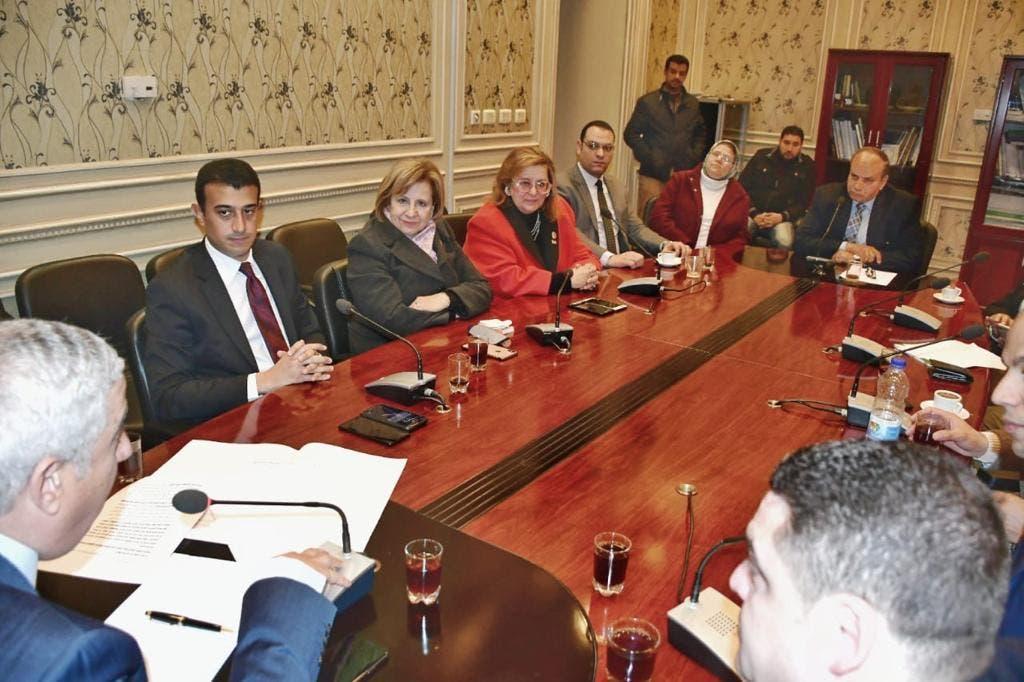 لجنة العلاقات الخارجية في البرلمان المصري