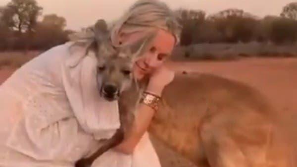 فيديو مؤثر.. كنغر يحتضن امرأة أنقذته من حرائق أستراليا
