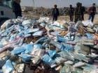 مأرب.. إتلاف أكثر من 3 أطنان من الحشيش المخدر في اليمن