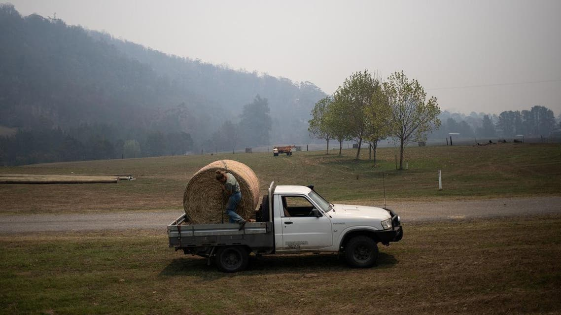 A farmer loads a stack of hay, donated by farmers of the region, on her truck in the town of Cobargo. (Reuters)