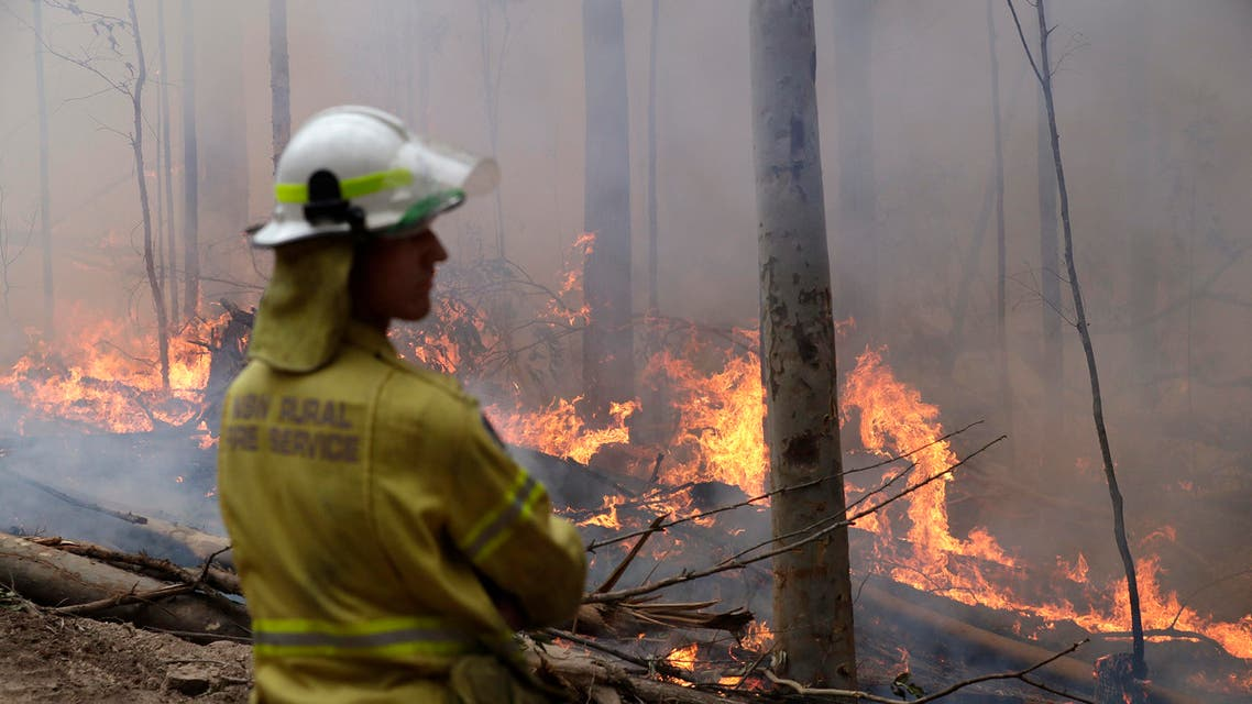 A firefighter keeps an eye on a controlled fire as they work at building a containment line at a wildfire near Bodalla, Australia, Sunday, Jan. 12, 2020. (AP)