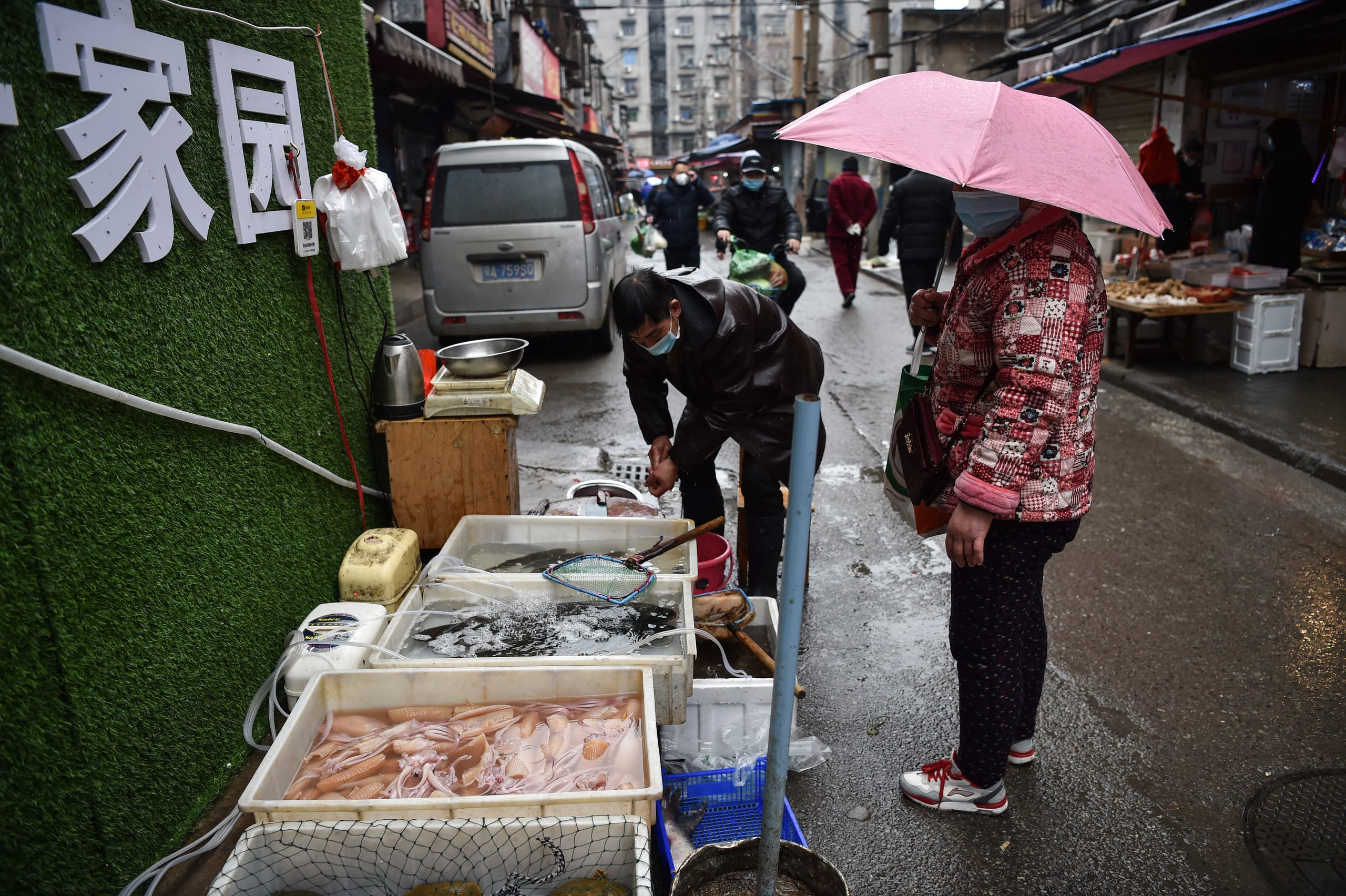 A masked vendor sells fish and turtles at a market in Wuhan where the coronavirus was discovered. (File photo: AFP)