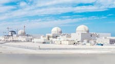 UAE nuclear power plant ready to launch in weeks: Mubadala Chief