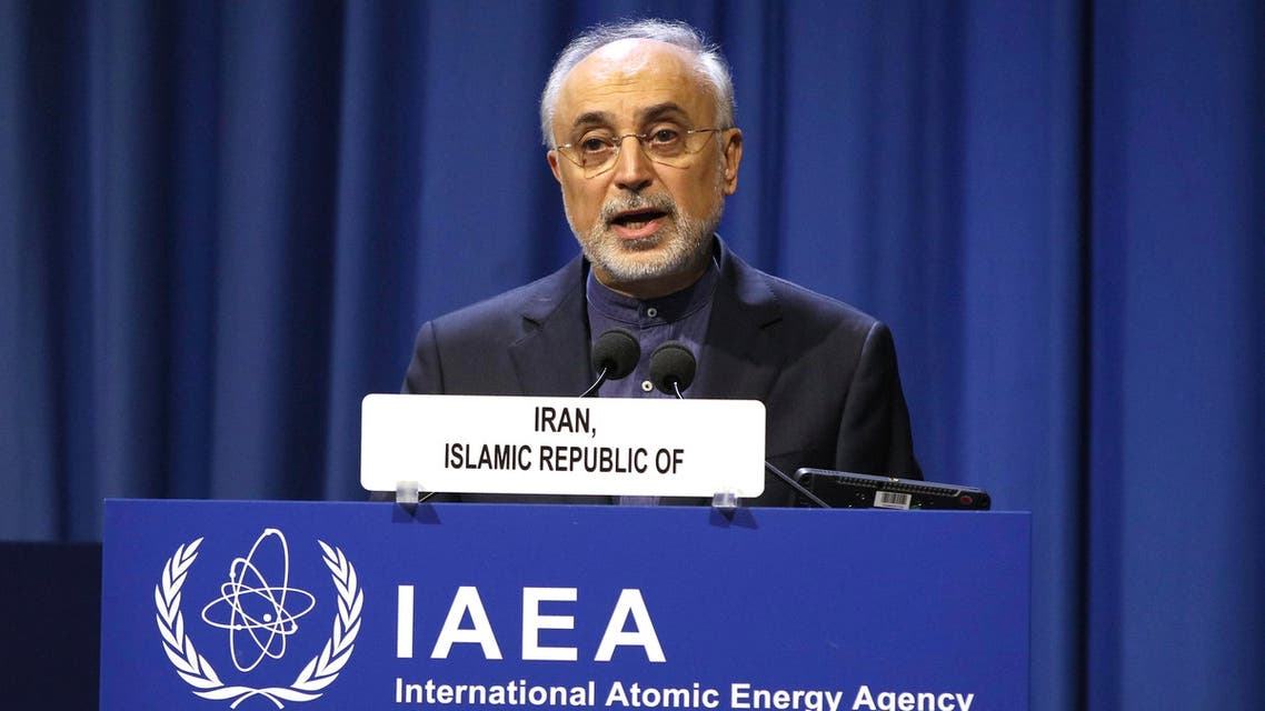 Iran's Vice-President and Head of the Atomic Energy Organisation Ali Akbar Salehi delivers his speech at opening of the general conference of the IAEA. (AP)