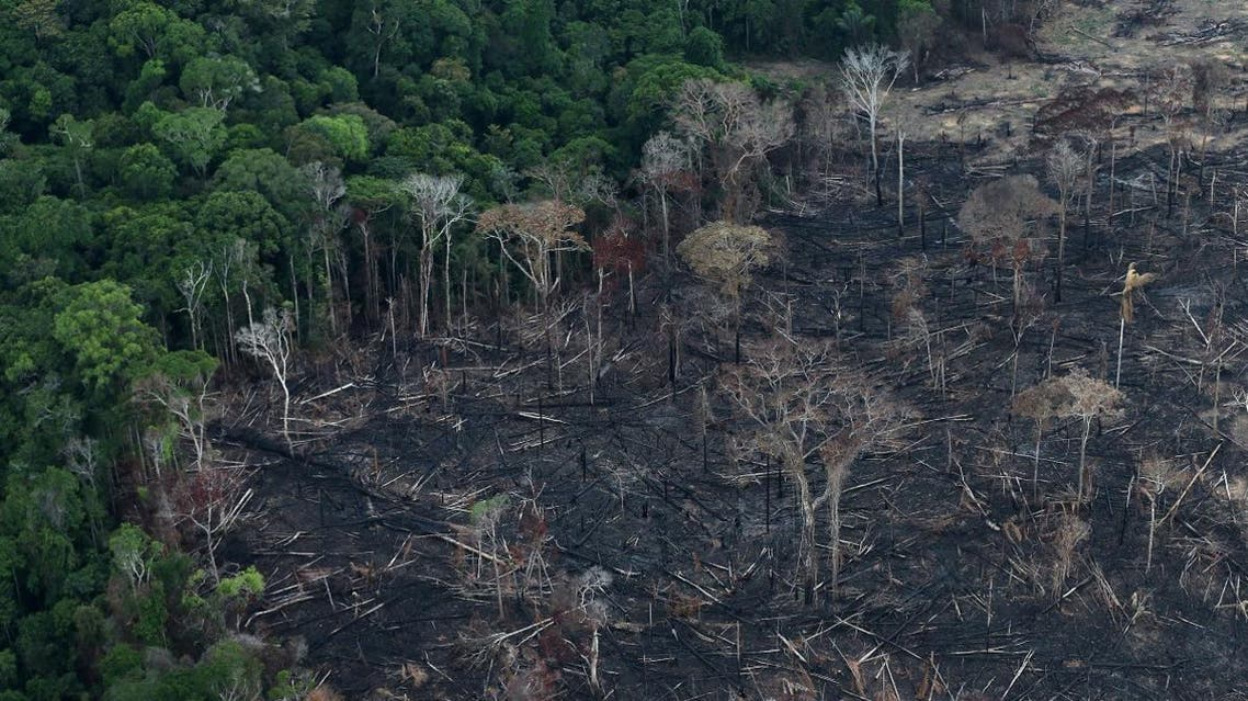 An aerial view of a tract of Amazon jungle after it was cleared by farmers in Itaituba, Para, Brazil September 26, 2019. (Photo: Reuters)
