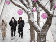 كارثة صحية بعد كورونا.. إنفلونزا الطيور يداهم الصين