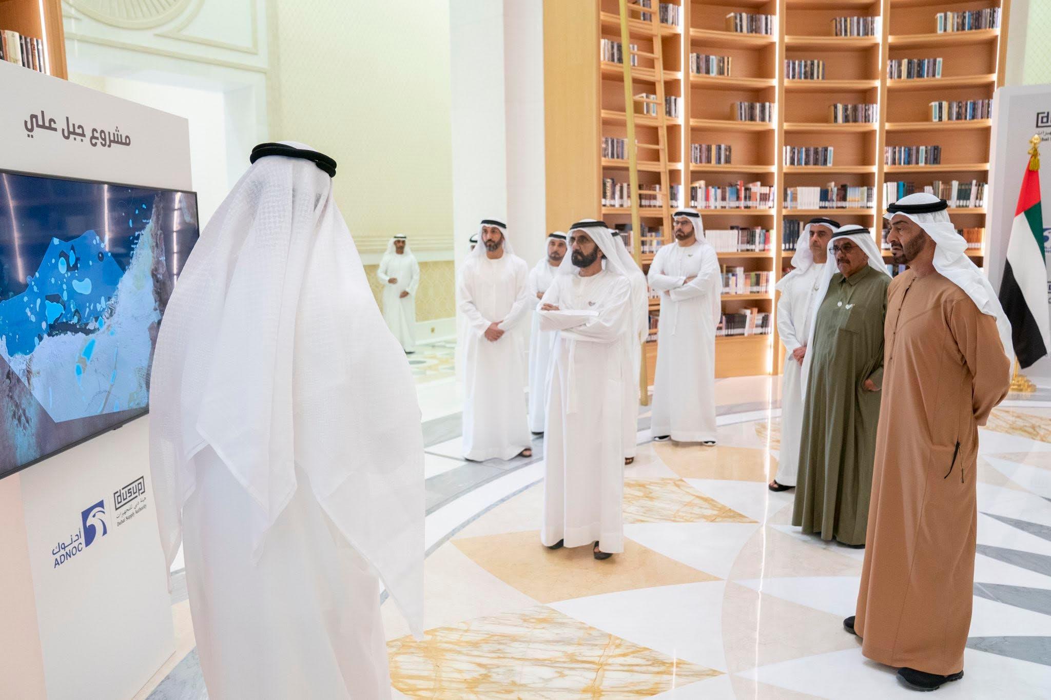 مشروع الغاز الإماراتي