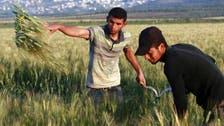 اسرائیلی فوج نے فلسطین کی زرعی برآمدات بند کردیں،کشیدگی میں اضافہ