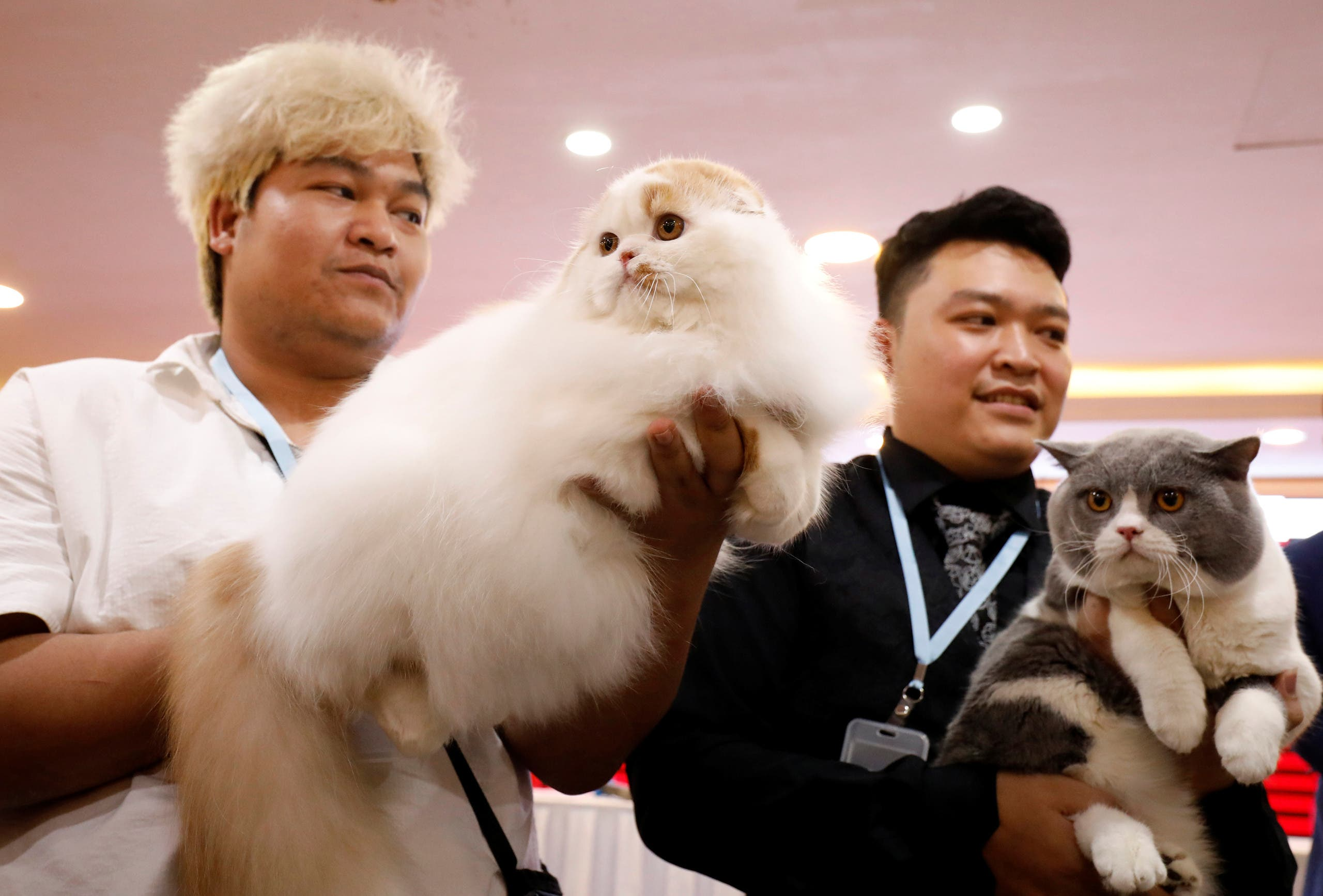 Nguyen Xuan Son of Vietnam and Tawin Prai of Thailand show their cats during the Vietnam's first cat show in Hanoi, Vietnam February 16, 2020. REUTERS