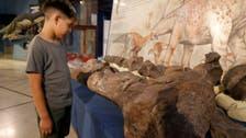 عاش قبل 90 مليون عام.. نوع جديد من الديناصورات