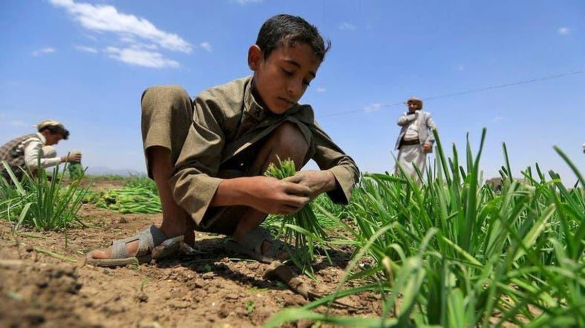 The UN warns of famine-like conditions in Yemen, including cases where people are eating leaves. (Supplied)