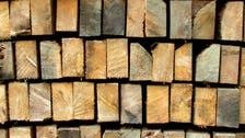 متى تنتهي أزمة جنون أسعار الأخشاب عالمياً؟