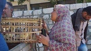 """سخرية في مصر..  توزيع """"بط"""" آخر صيحات القروض الميسرة!"""