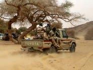 مقتل 120 إرهابياً في عملية عسكرية بالنيجر