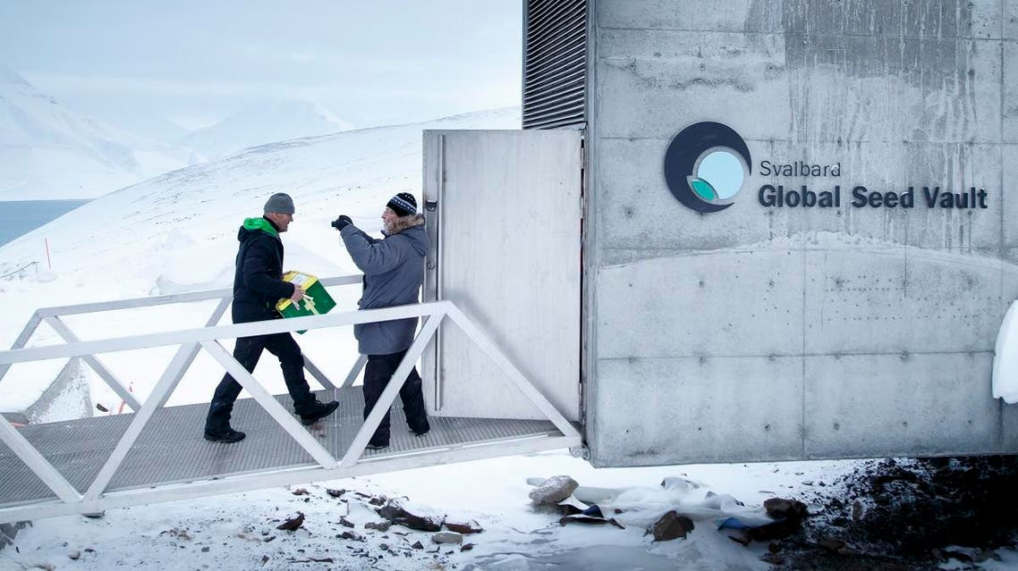 This file photo taken on March 1, 2016 shows a man carrying one of the newly arrived boxes containing seeds from Japan and USA into the international gene bank Svalbard Global Seed Vault (SGSV), Norway. (File photo: AFP)