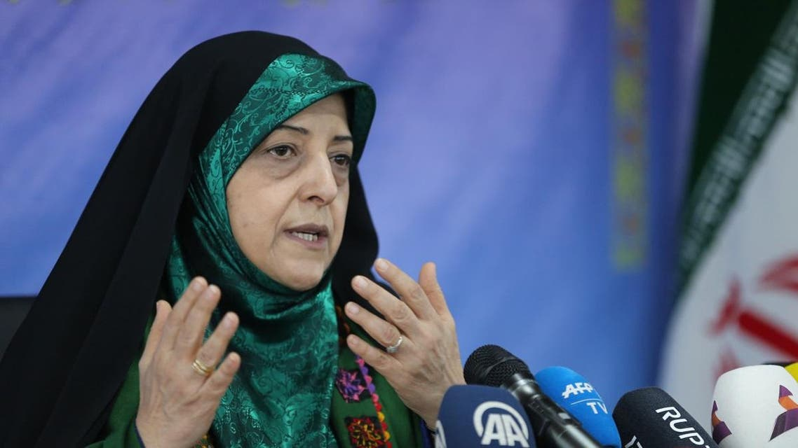 Vice President of Iran for Women and Family Affairs, Massoumeh Ebtekar, speaks to reporters during a press conference in Tehran on January 29, 2019. (AFP)
