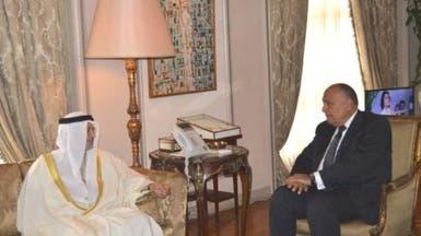 تأكيد إماراتي مصري على رفض التدخلات الخارجية بالدول العربية