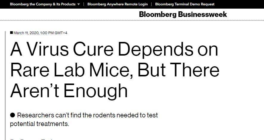 خلاص البشرية كورونا يعتمد الفأر؟ 65409ba5-0d40-460d-9d1b-7875a8d8e567.JPG