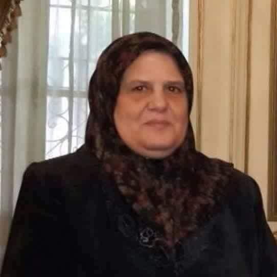 النائبة هيام عامر