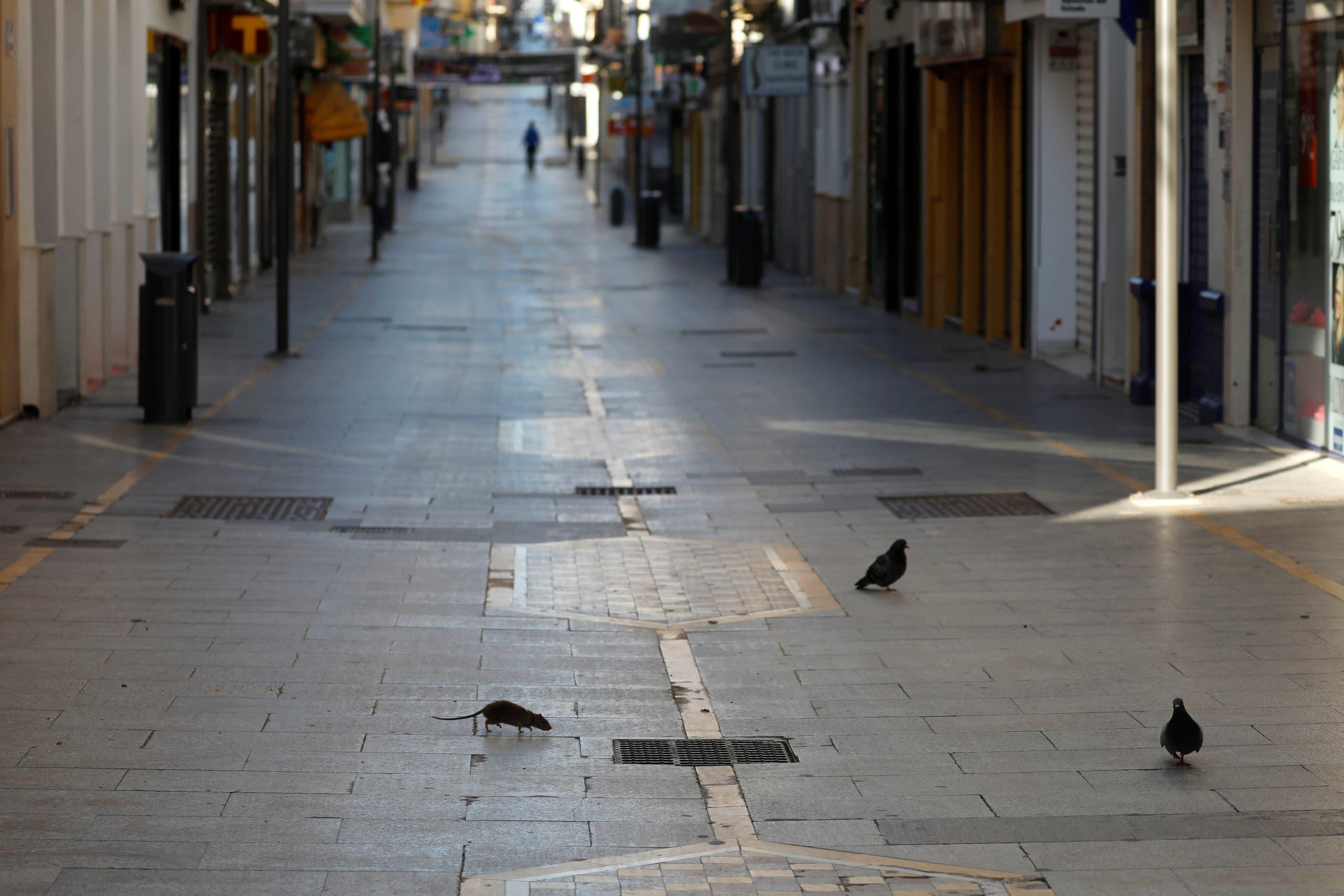 من أحد الشوارع الفارغة في روندا، جنوب إسبانيا (أرشيفية- رويترز)