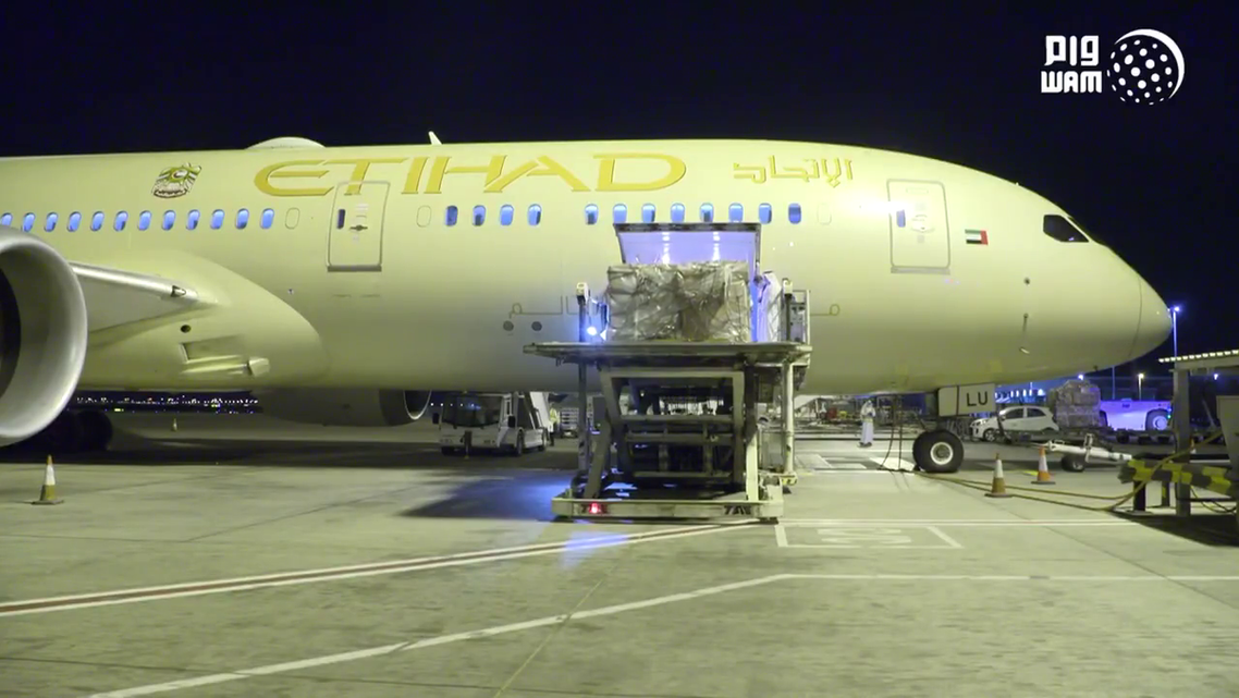 UAE sends 10 tons of medical supplies to Italy to help counter coronavirus